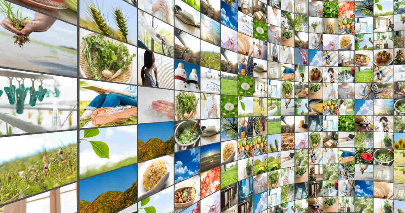画面解像度ってなに?相対解像度や画素数 画面解像度を確認する方法