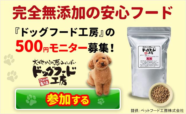 ペットフード工房『ドッグフード工房』500円モニタ